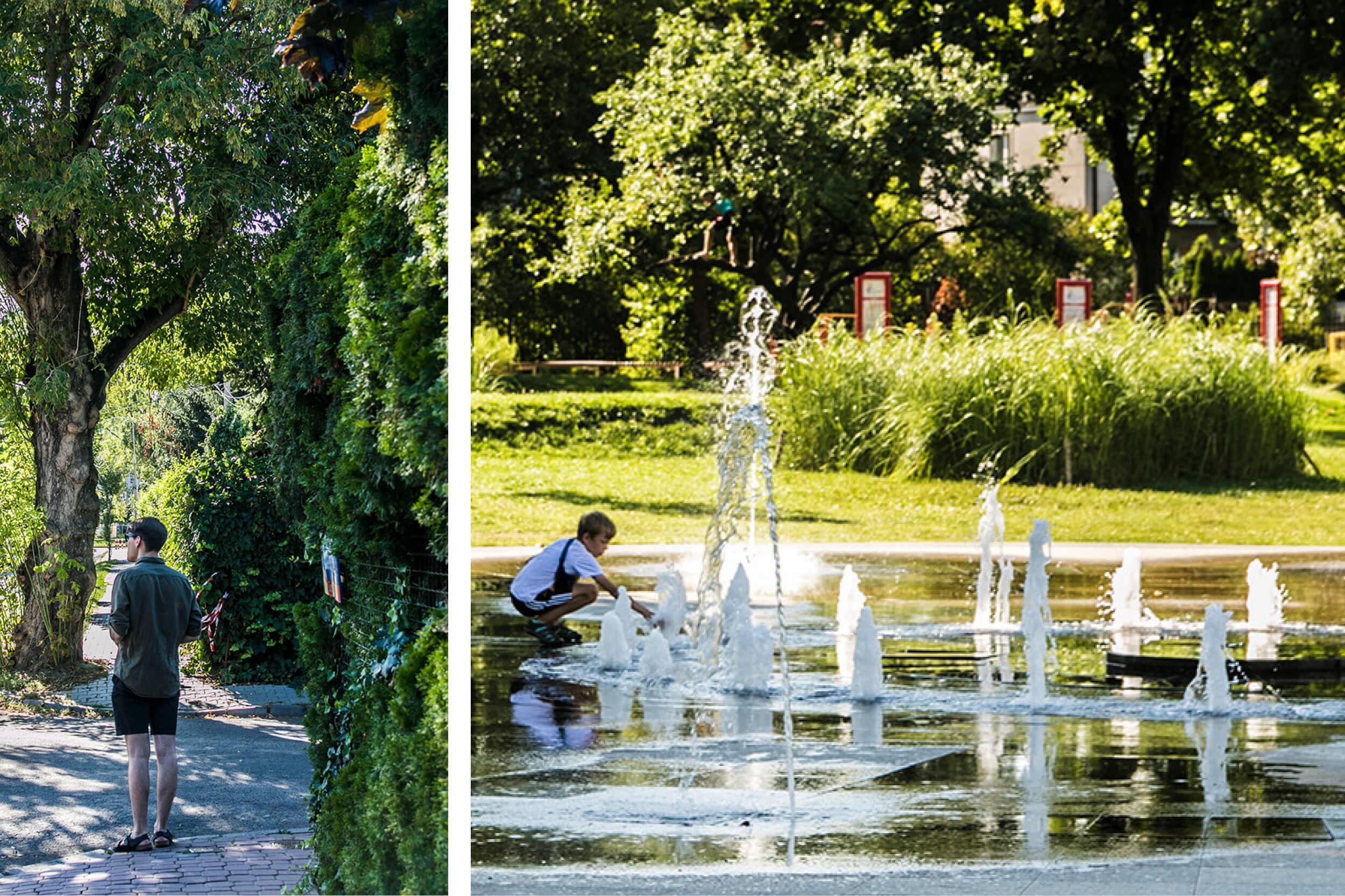 mieszkanie na parterze Łukiska - fontanna w parku Znicza